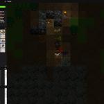 Night-time house raid!
